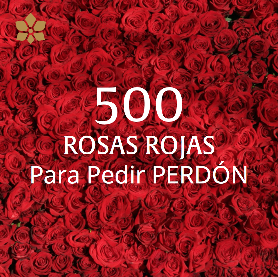 Arreglo de 500 Rosas