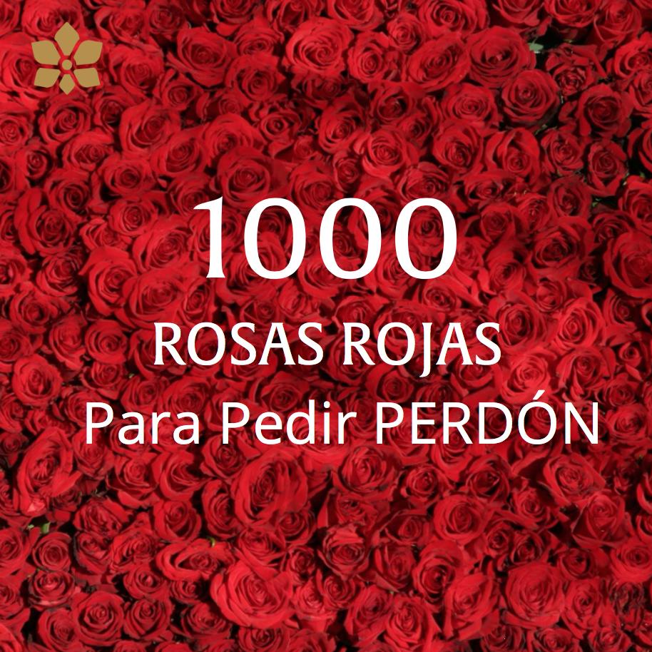 Arreglo de 1,000 Rosas