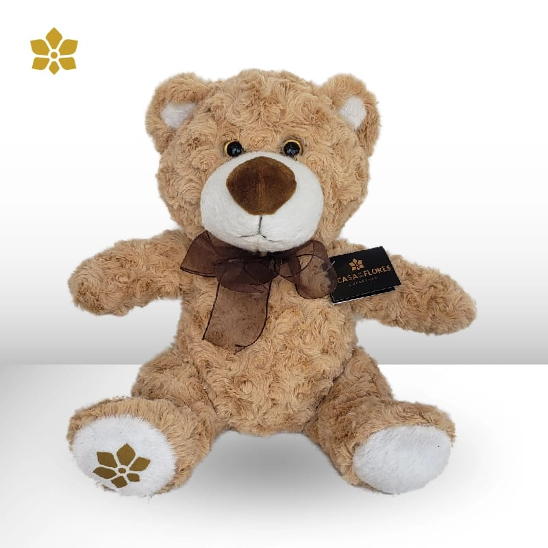 Teddy Camilo