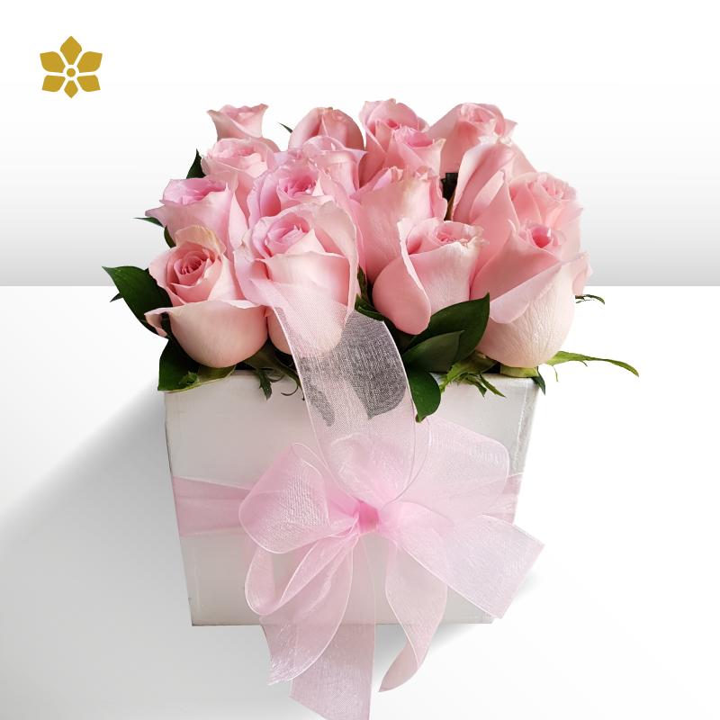 Caja 16 Rosas Rosas